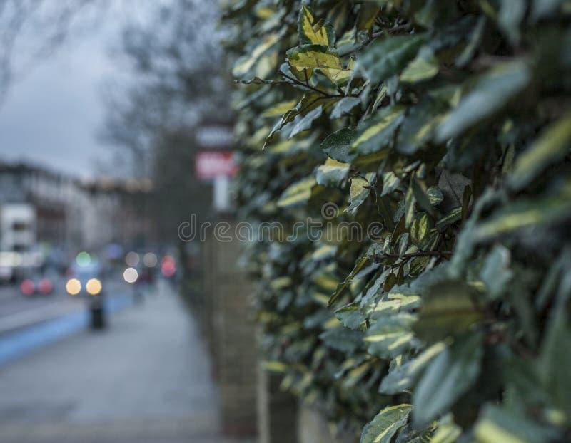 Vie di Londra - una sera scura fotografia stock