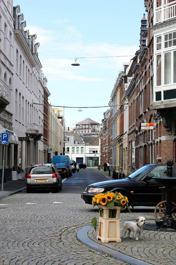 Vie di Maastricht immagini stock