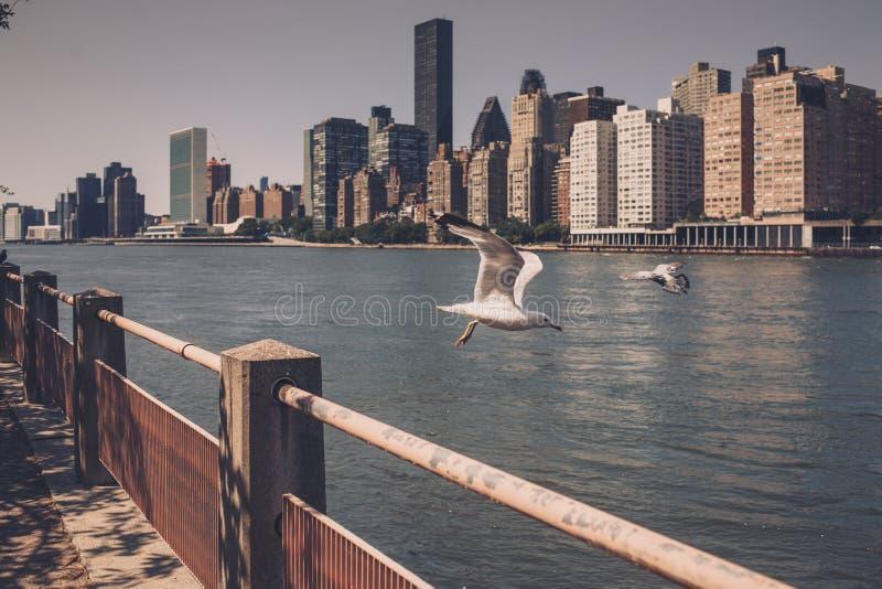 Vie di New York City fotografia stock