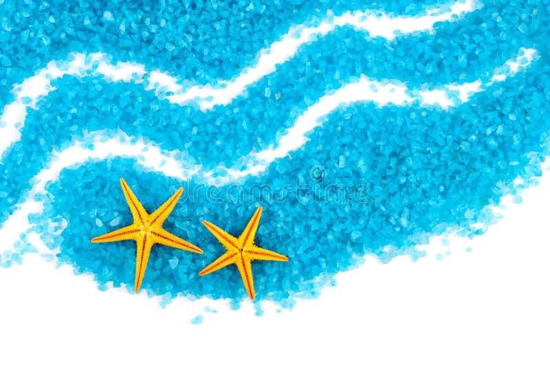 Vie marine. photographie stock libre de droits