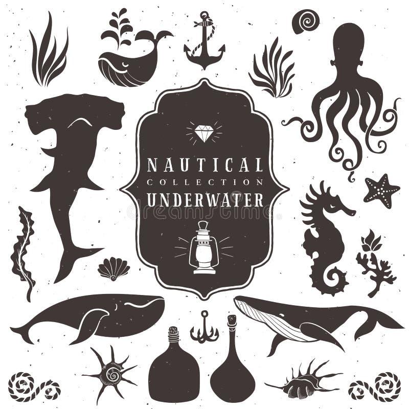Vie marine, animaux marins Éléments tirés par la main de vintage illustration stock