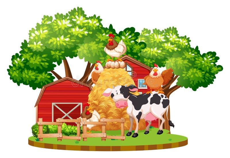 Vieh auf dem Bauernhof vektor abbildung