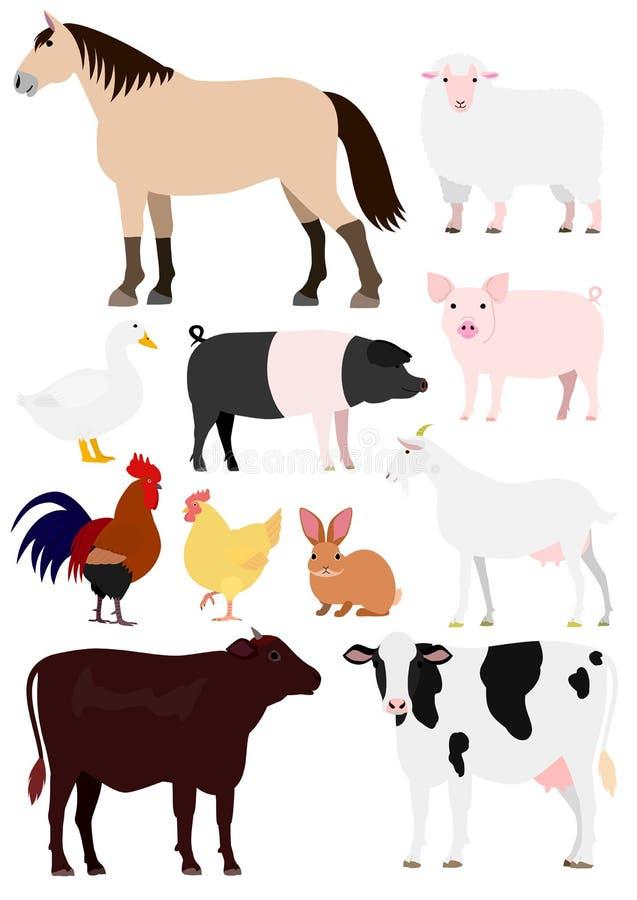 Vieh eingestellt stock abbildung