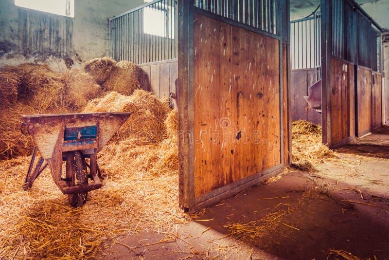 Viehwagenstroh stockfoto