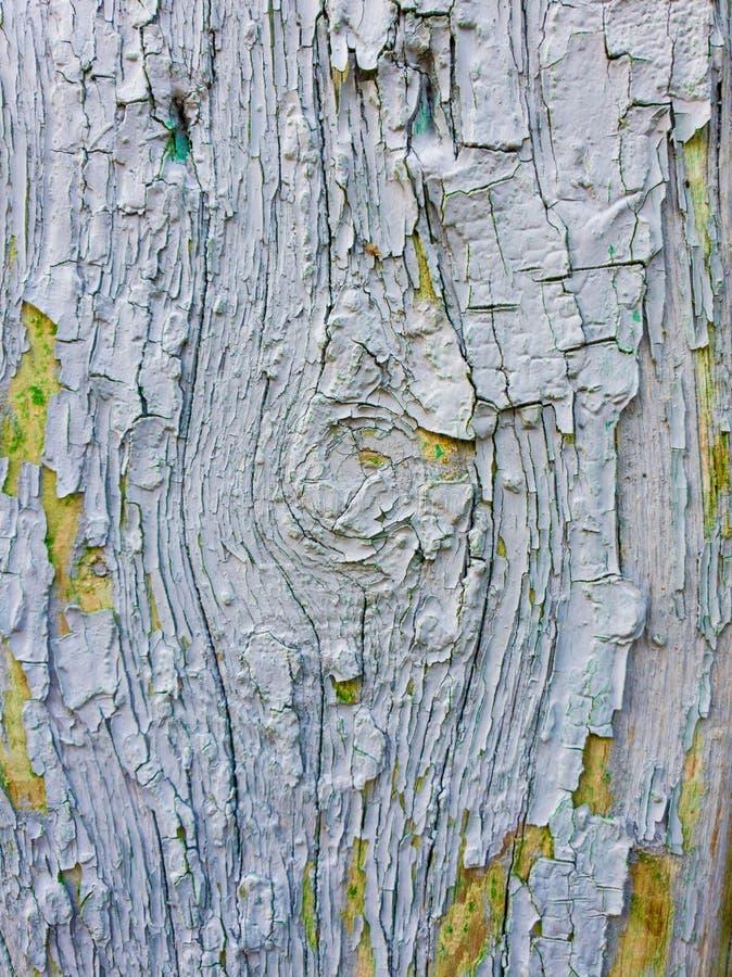 Vieil épluchage de peinture d'un vieux fond en bois de texture Grunge rustique d'abrégé sur en bois mur images libres de droits