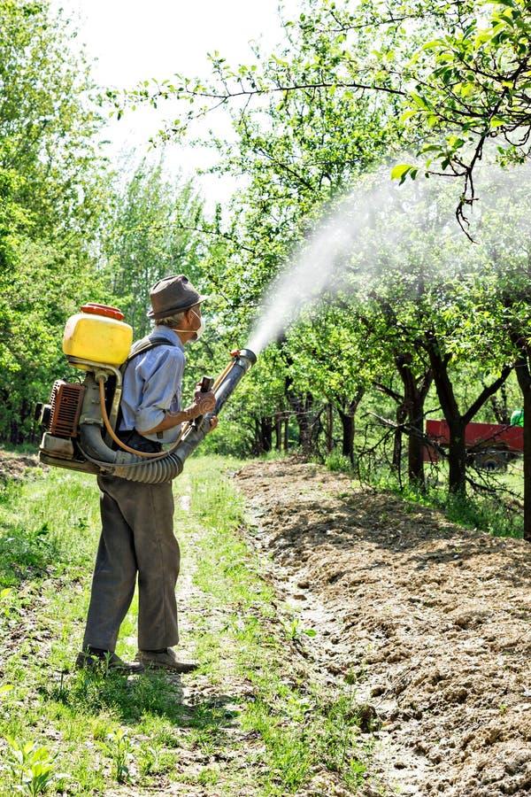 Vieil agriculteur pulvérisant les arbres images stock