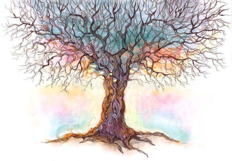 Vieil arbre illustration libre de droits
