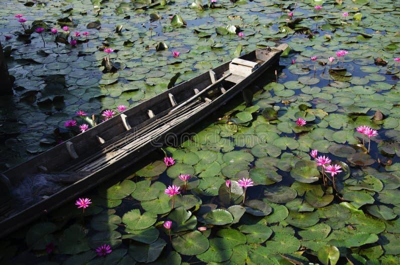 Vieil arrêt du bois de bateau de longue queue à la rive du lac Thale NOI image libre de droits