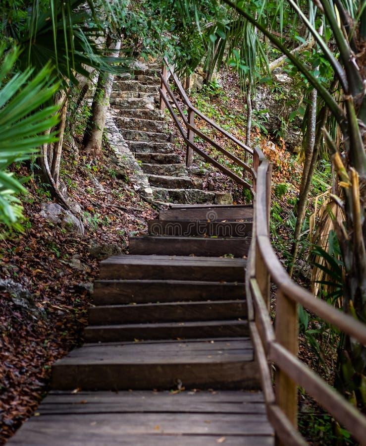 Vieil escalier en bois et en pierre amenant une colline dans la jungle photos stock