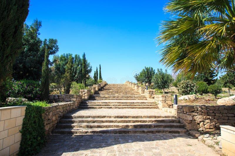 Vieil escalier en pierre au ciel en parc parmi les arbres photos stock