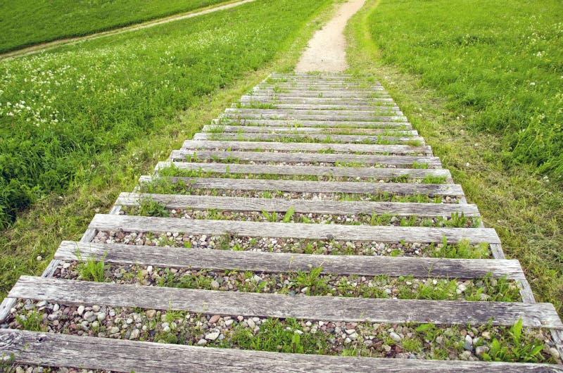 Vieil escalier ext rieur en bois avec le gravier en parc for Escalier exterieur bois prix