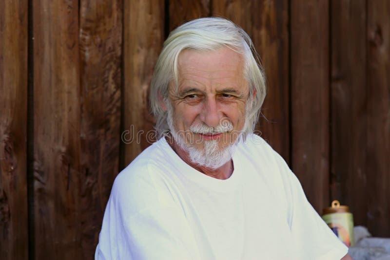 Vieil homme gris beau et souriant images libres de droits
