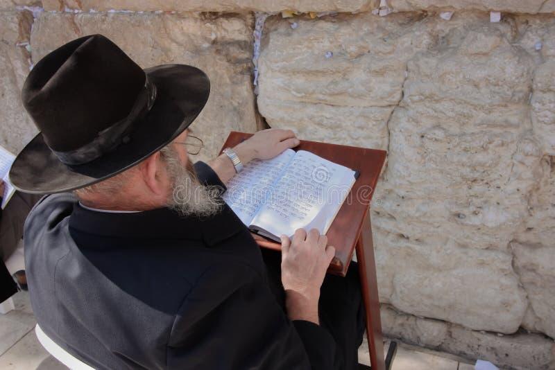Vieil homme juif Tora de lecture au mur pleurant photographie stock