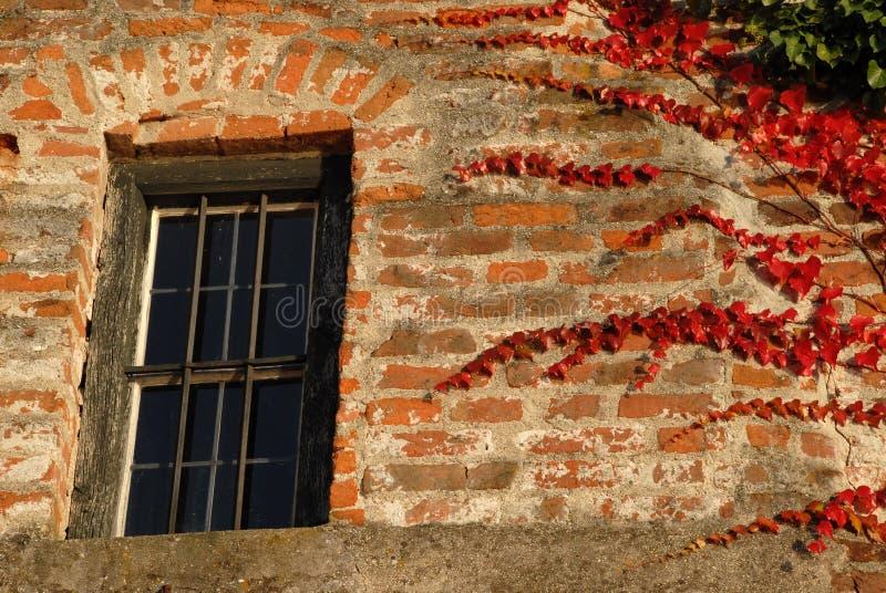 Vieil hublot avec des lames d'automne photos stock