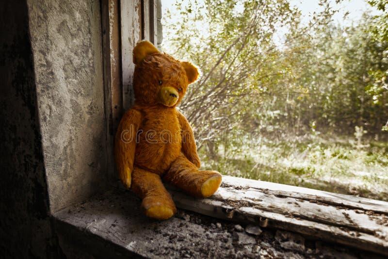 Vieil ours de jouet abandonné dans les ruines. photos stock
