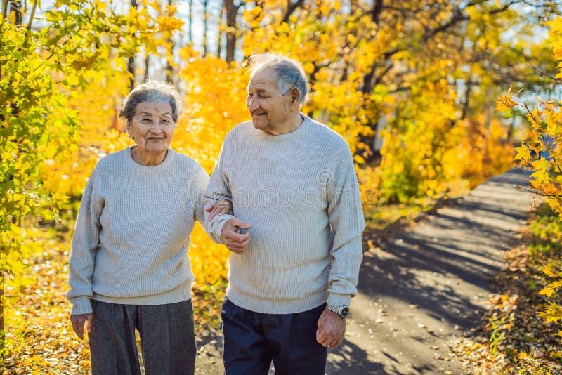 Vieillards heureux pendant la famille de forêt d'automne, l'âge, la saison et le concept de personnes - couple supérieur heureux  photos libres de droits