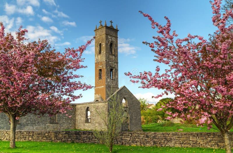 Vieille abbaye irlandaise image libre de droits