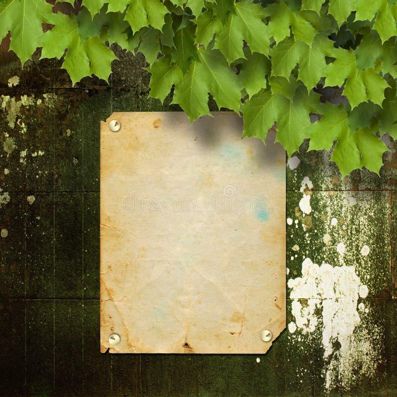 Vieille annonce avec des boutons en métal et des branches vertes illustration libre de droits