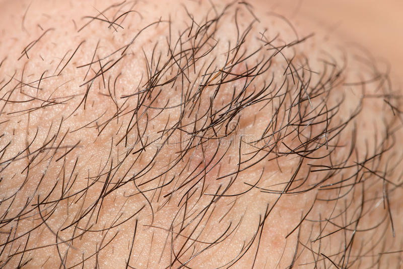 Vieille barbe de sept jours Vieille barbe de sept jours sur un mâle caucasien photos libres de droits