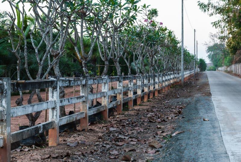 Vieille barrière blanche Beside Road dans le pays image libre de droits
