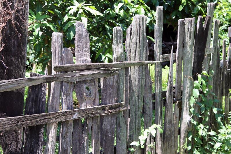 Vieille barrière en bois avec le fond vert d'arbre photos libres de droits