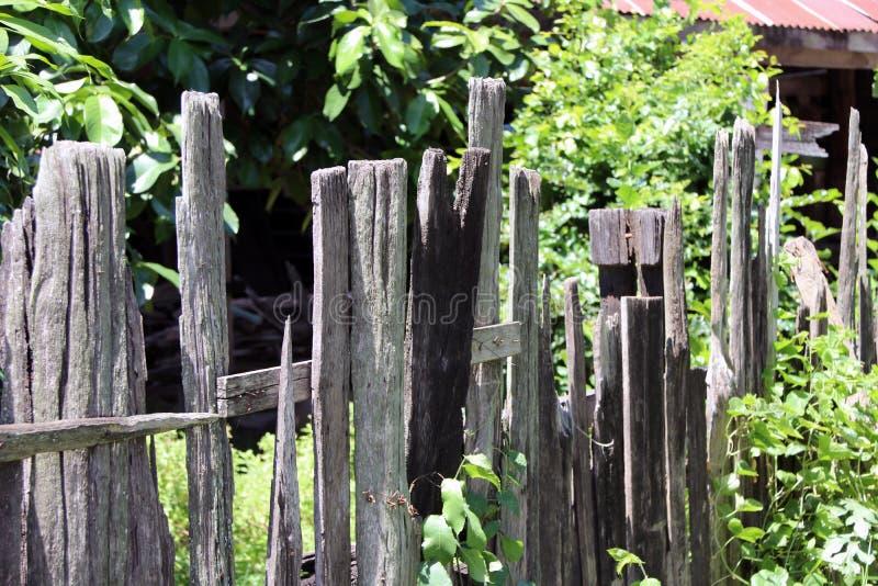 Vieille barrière en bois avec le fond vert d'arbre photos stock