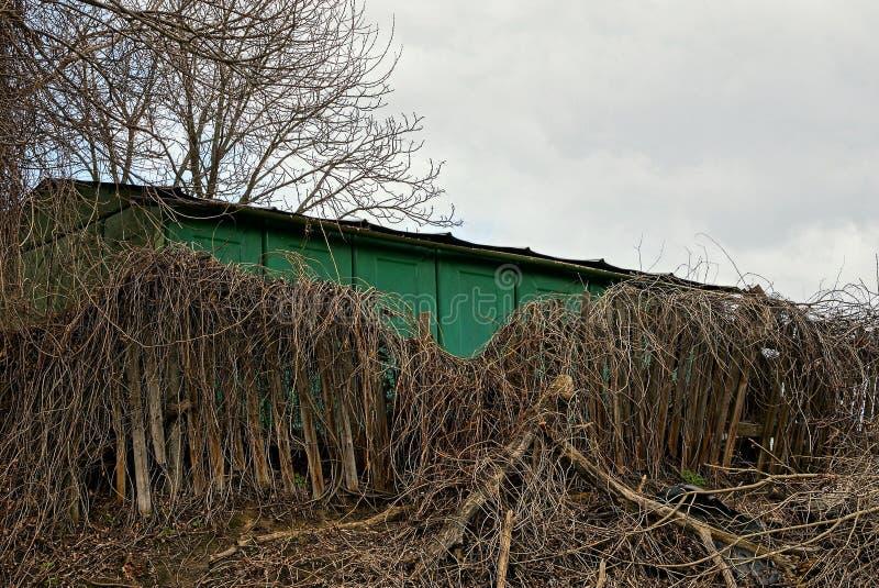Vieille barrière en bois cassée envahie avec la végétation sèche près du mur vert contre le ciel photos libres de droits