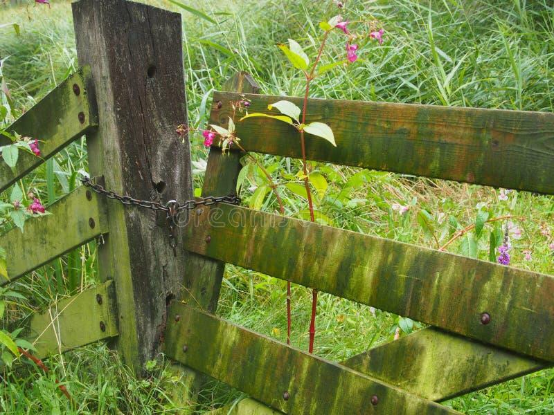 Vieille barrière en bois fermée dans un pré photos libres de droits