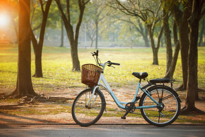 Vieille bicyclette de vintage en parc public avec des économies d'énergie et e vert photo stock