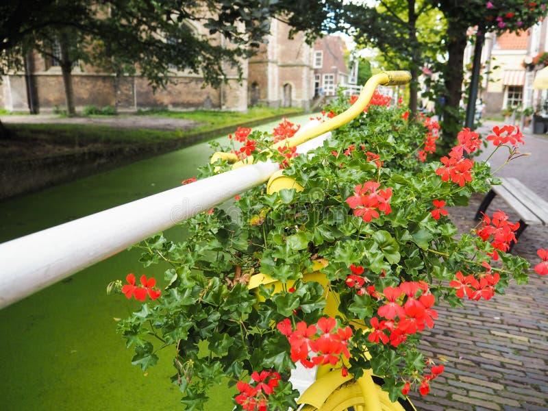 Vieille bicyclette jaune remplie de fleurs et utilisée pour le jardin urbain photos stock