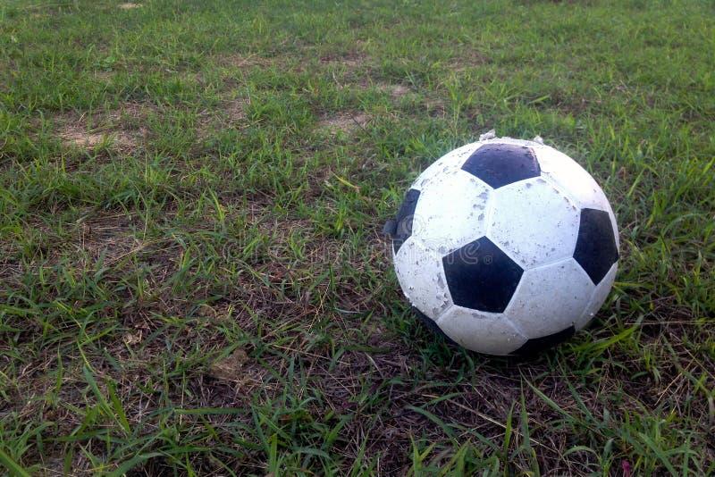 Vieille boule sur l'herbe verte image libre de droits