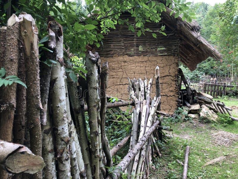 Vieille cabane photo libre de droits