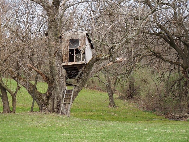 Vieille cabane dans un arbre délabrée dans la campagne photos libres de droits