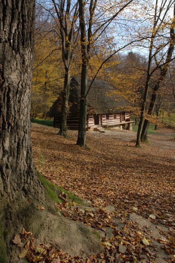 Vieille cabine dans les bois photos stock