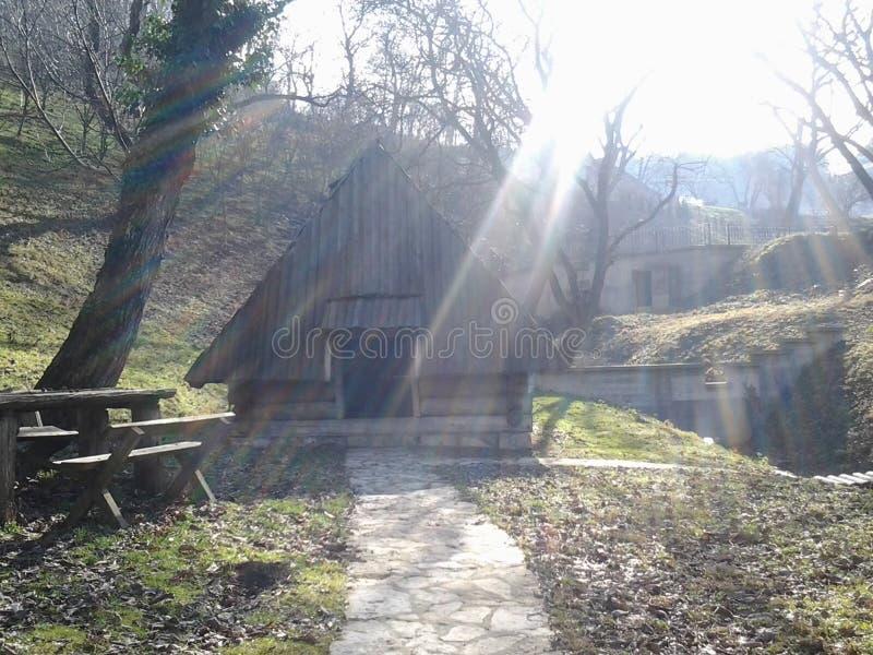 Vieille cabine de logarithme naturel dans les bois photo stock