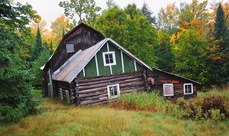 Vieille cabine de logarithme naturel de penchement dans la forêt photos stock