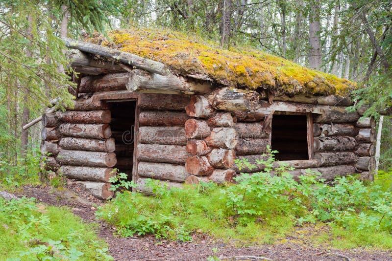 Vieille cabine de logarithme naturel traditionnelle se décomposant dans le taiga de Yukon photos stock