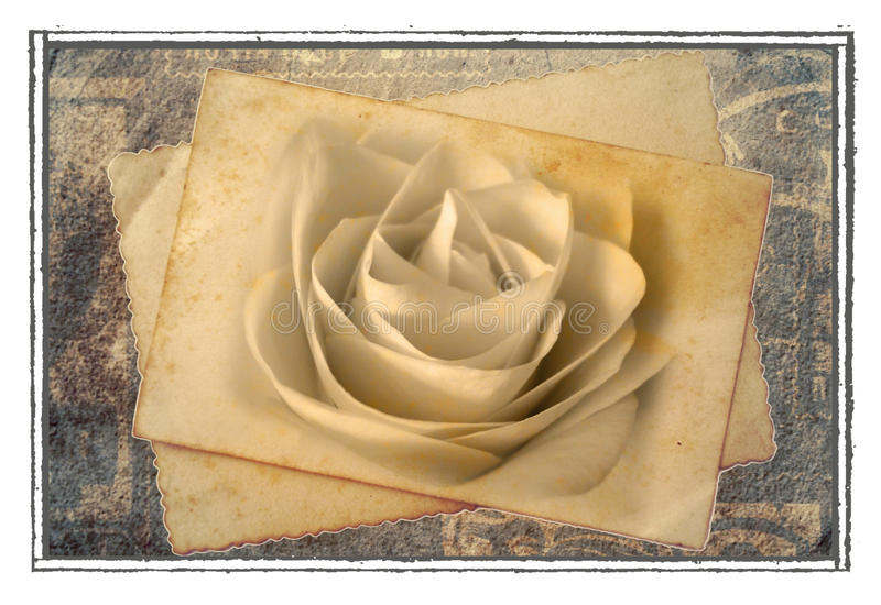 Vieille carte postale rose illustration stock