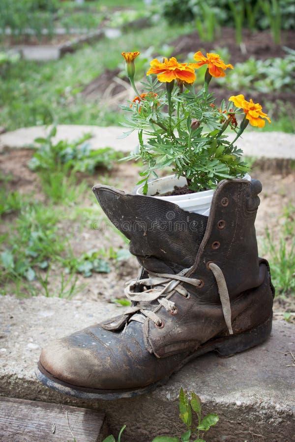 Vieille chaussure utilisée dans la conception de jardin images stock