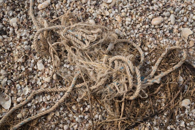 Vieille corde minable sur le rivage après une tempête dans une pile des déchets de l'herbe sèche et des coquilles photos libres de droits