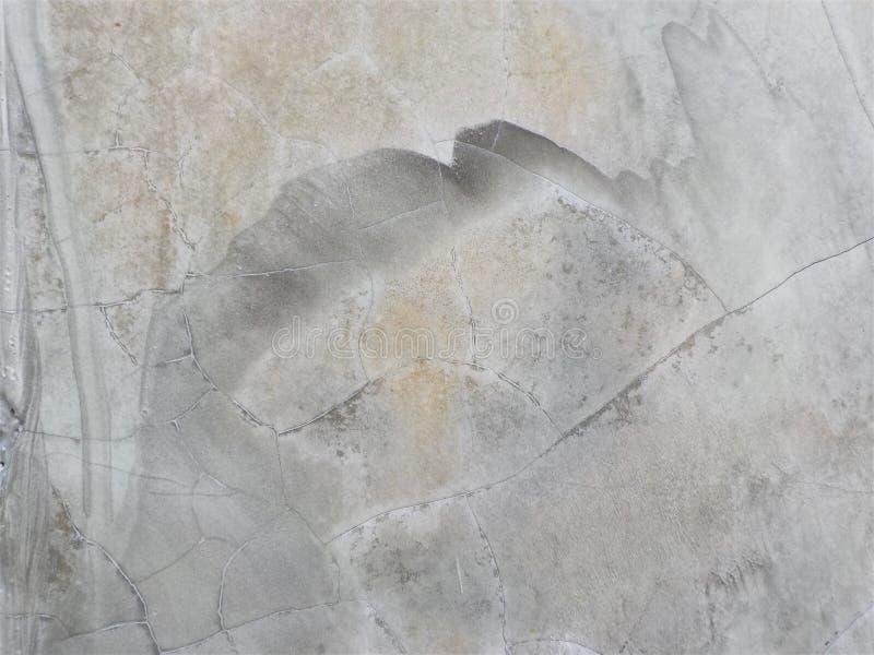 Vieille couleur de blanc de texture de ciment image stock