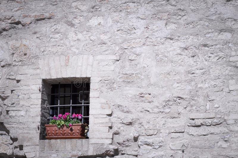 Vieille fenêtre d'isolement avec des grilles et un vase de fleurs violettes image libre de droits