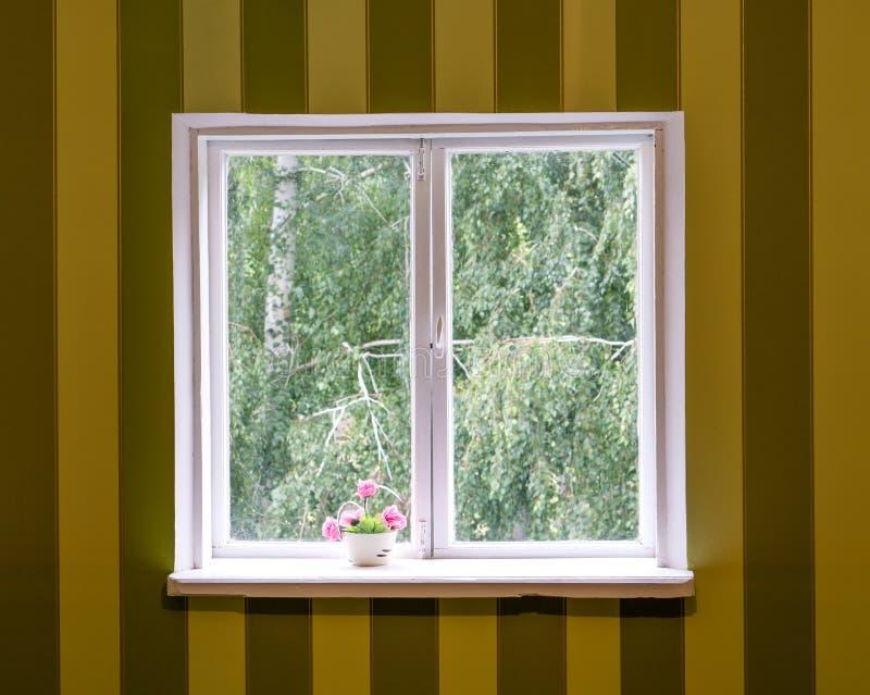 Vieille fenêtre en bois blanche dans le mur rayé photo libre de droits