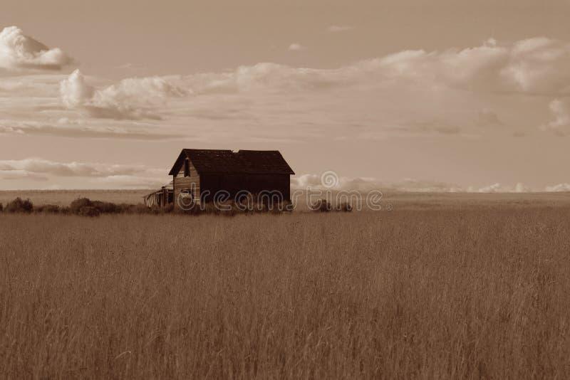 Vieille ferme sur une prairie photographie stock