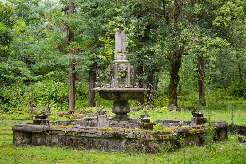 Vieille fontaine ruinée abandonnée en parc envahi image libre de droits