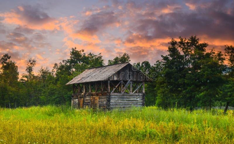 Vieille grange au bord de la forêt avec l'herbe verte grande et les fleurs sauvages au coucher du soleil Photo courante dénommée  image stock