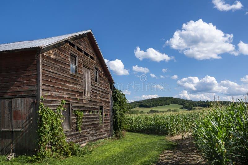 Vieille grange avec vue sur un Cornfield de la vallée de l'Hudson photo libre de droits
