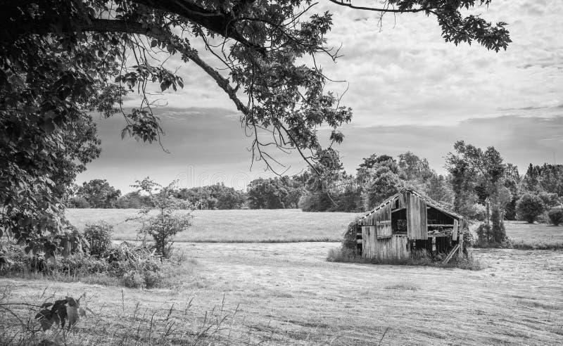 Vieille grange dans Hayfield photographie stock libre de droits