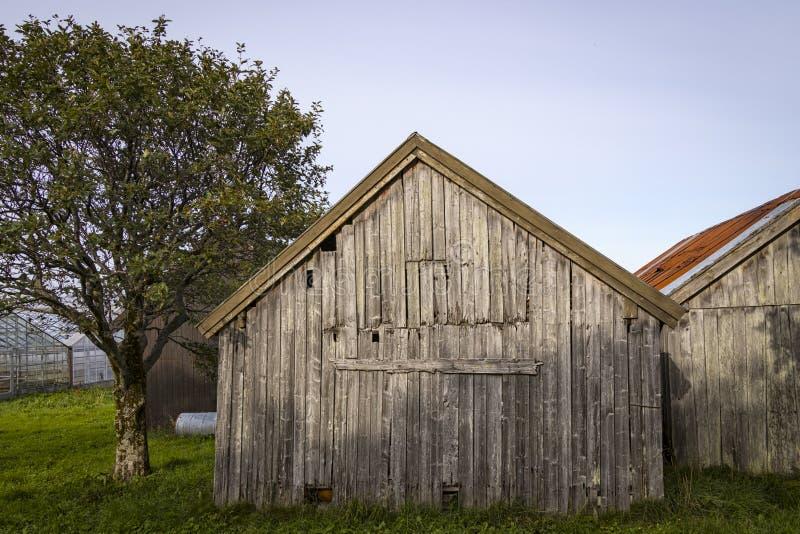 Vieille grange en bois et superficielle par les agents, Norvège photographie stock libre de droits