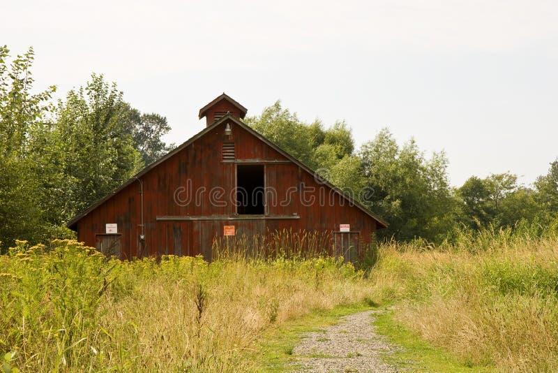 Vieille grange rouge dans les herbes photographie stock